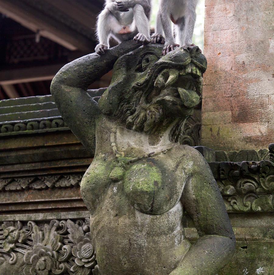 Sacred Monkey Forest, Bali, Indonesien. Klicka på pilarna i vänstra hörnet för större version av bilden.