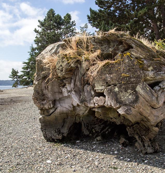 Platsen där Laura Palmer hittas mördad. The Kiana Lodge, Poulsbo, Seattle.