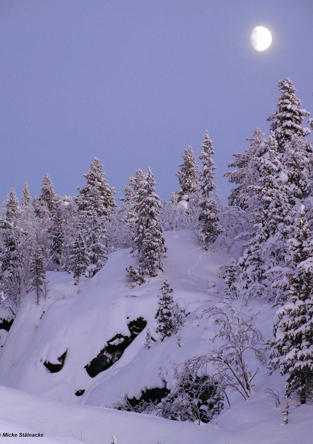 Tuolluvaaragruvans gamla dagbrott i Kiruna.