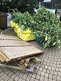 Garden clearance gardener Maidstone