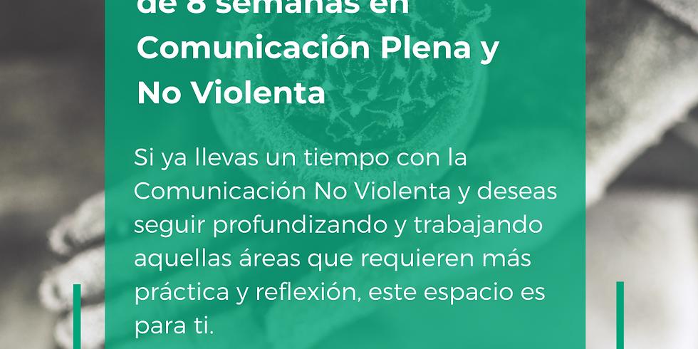 Programa de profundización de Comunicación Plena y No Violenta