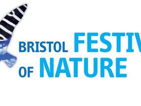 Festival of Nature | Workshop 2010
