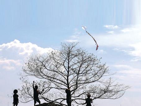 Children fly a kite