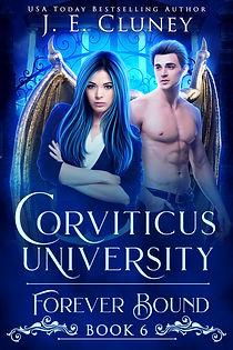 Corviticus Academy Series Book 6.jpg