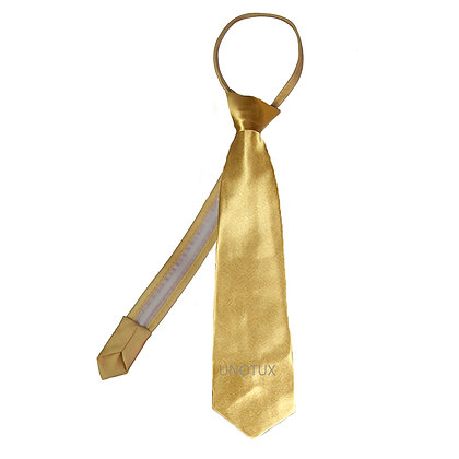 Gold Satin Zipper Long Neck Tie (S-20)