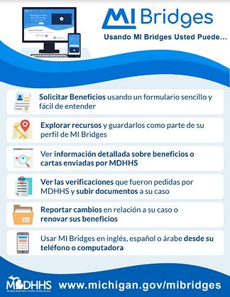 MI Bridges SPA.PNG
