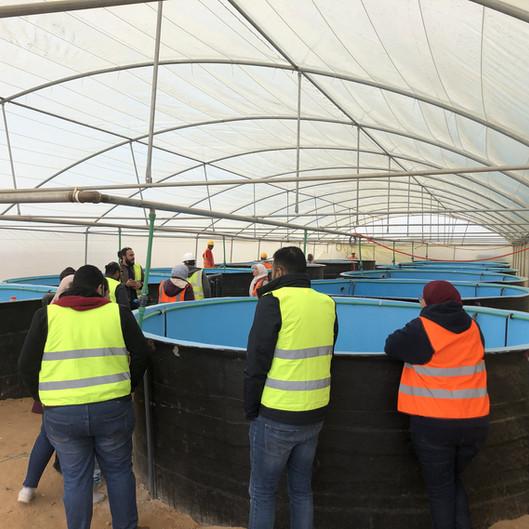 Intensive Aquaculture by Plug'n'Grow