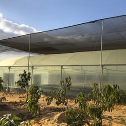 An Aquaponic Farm by Plug'n'Grow