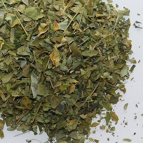 Moringa CO cut