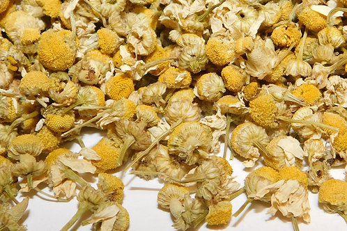 Chamomile whole CO