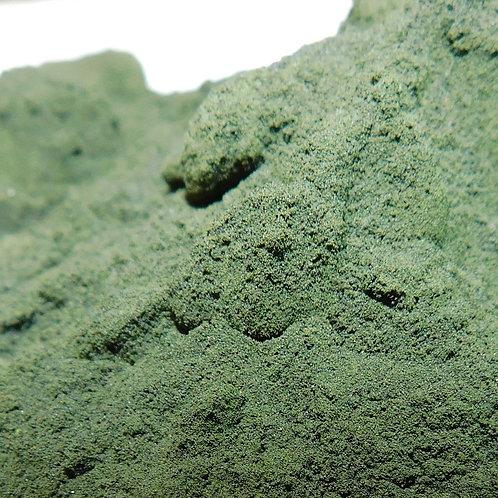 Spirulina CO powder