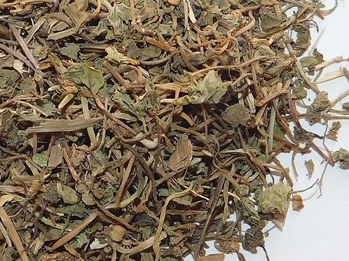 Gotu Kola herb CO cut