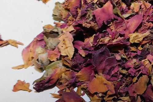 Rose Buds & Petals, CO