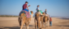 MOROCCO FAMILY HOLIDAY WITH INTREPID TRAVEL