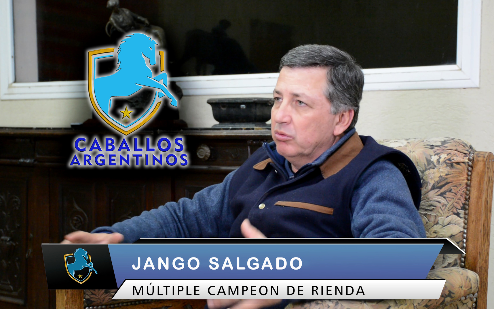 clases caballos