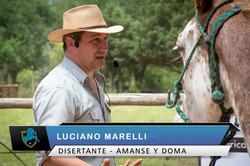 Luciano Marelli - CABALLOS ARGENTINO