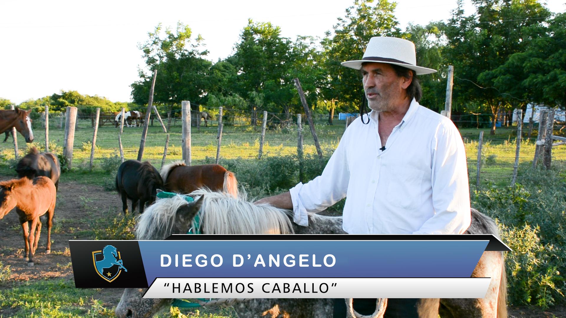 Diego Dangelo