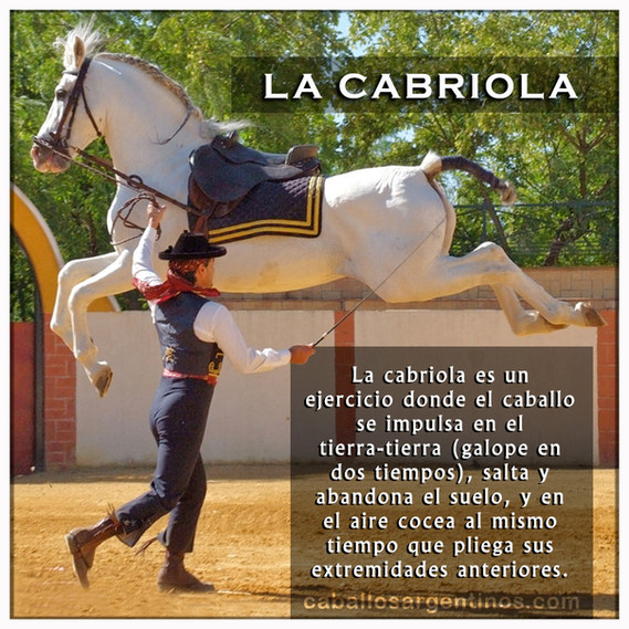 CABRIOLA.jpg