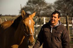 caballo confiado