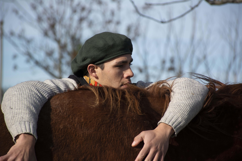 capacitación caballos