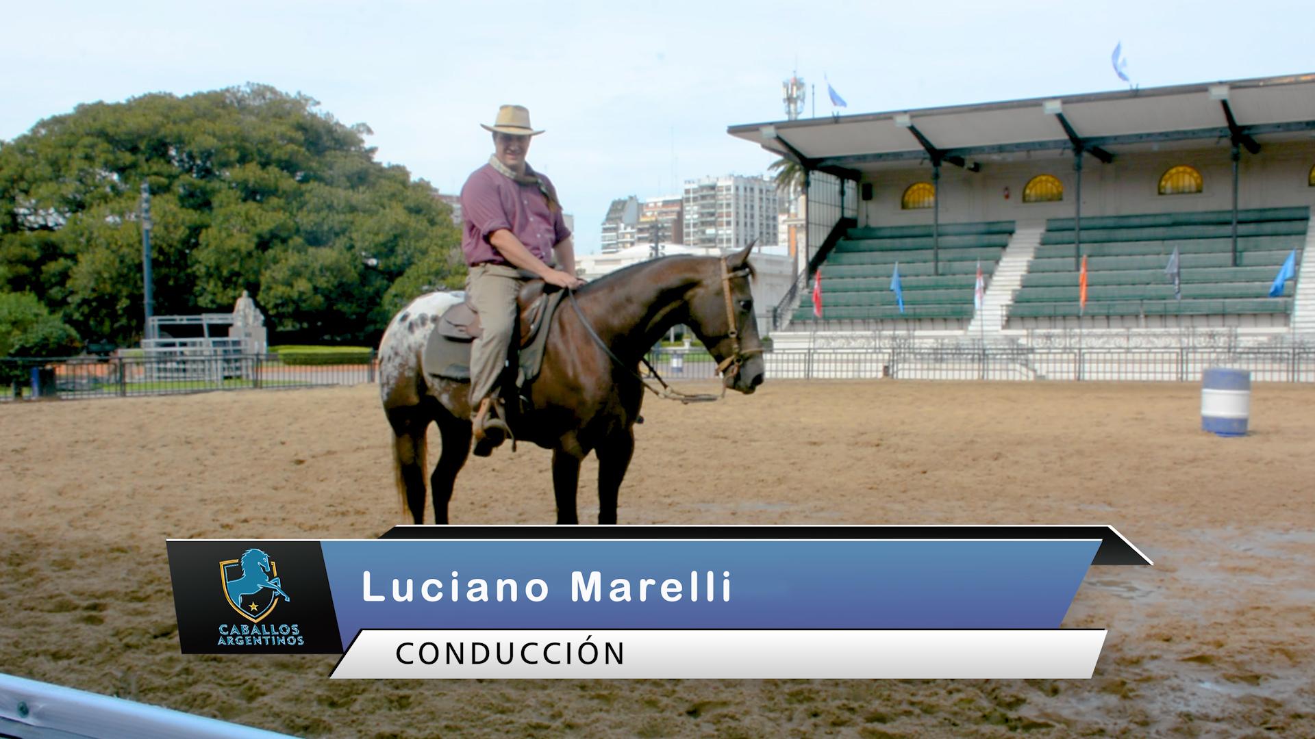 caballos programa