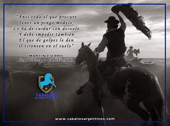 GAUCHO CABALLO.jpg