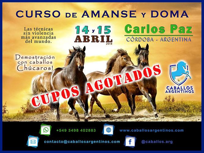 CARLOS PAZ.jpg