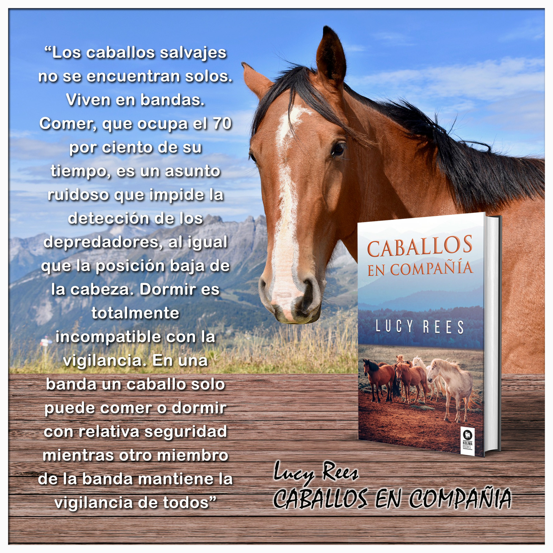 lucy libro.jpg