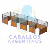 boxes caballo.jpg