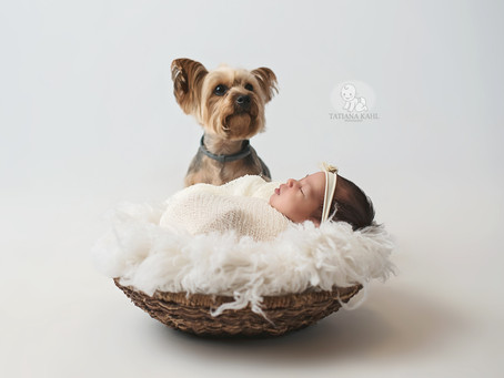 Family Newborn Baby Studio Photo Shoot Indianapolis IN