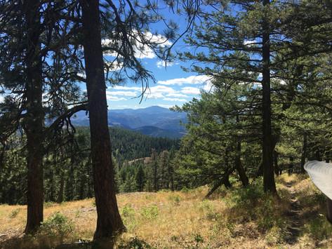 Eastern Washington landscape