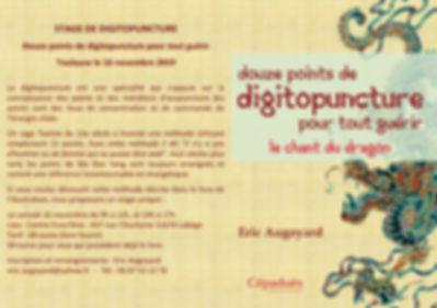 STAGE DE DIGITOPUNCTURE.jpg