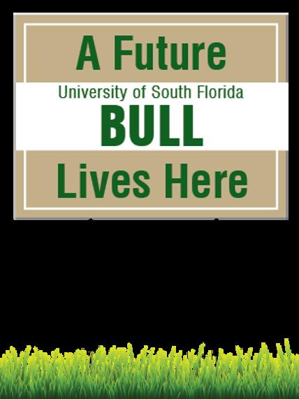 Future USF Bull