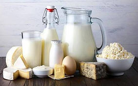 bl04dairy product.jpg