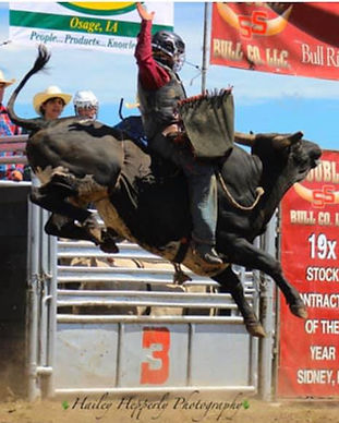 Bull riding.jpeg