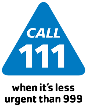 Call_111_Logo.svg.png