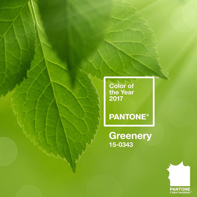 Greenery - Pantone's Color for 2017