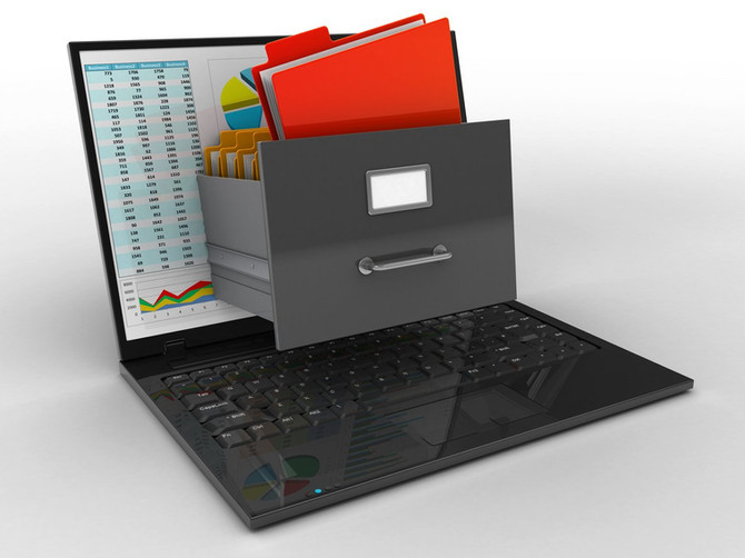 What is the purpose of a Document Management System?