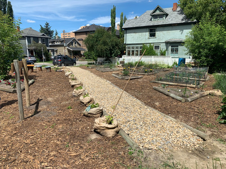 Growing Possibilities: The Making of the Possible Garden