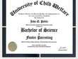 Bachelor of Science in Foster Parenting
