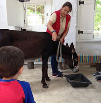 Lisbon for kids, Little Lisbon, kids activities, family activity, learning activity, donkey ride, farm experience
