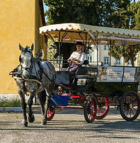 Lisbon for kids, Little Lisbon, kids activities, family activity, learning activity, horse carriage ride, Belém