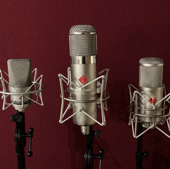Some of our vocal mics