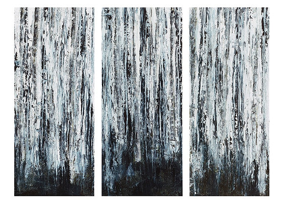 Birch Forest Set Of 3 Printed Canvas With Gel Coat