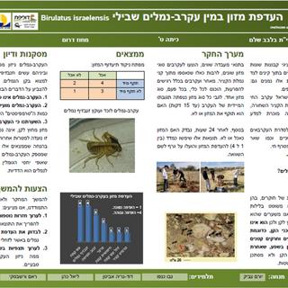 חקר נמלים