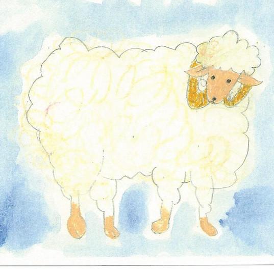 羊.jpeg