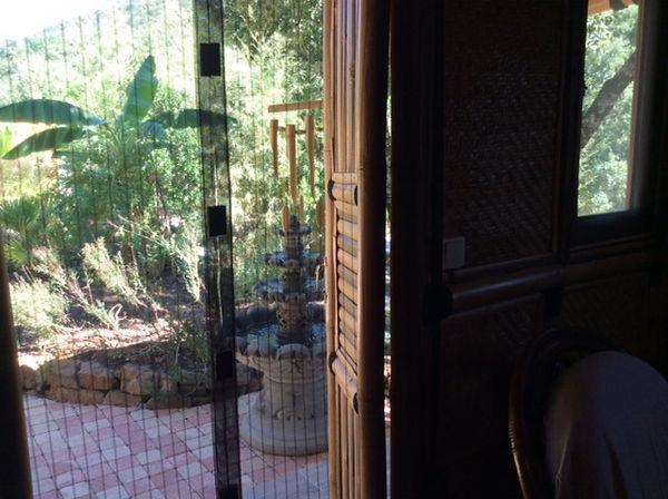Vue de la chambre vers le jardin exotiqu