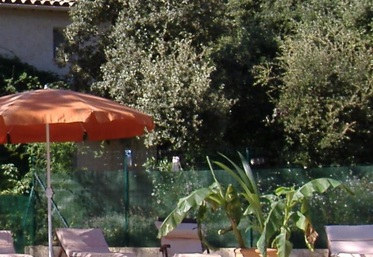 vue_piscine_en_bois_modifié.jpg