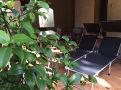 terrasse Capucine