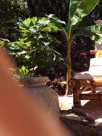 transats au coco banane.JPG